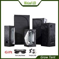 Гроу тент для гидропонного выращивания тепличных растений, тенты с освещением, 80/100/120/150/240/300 Гроу тенты