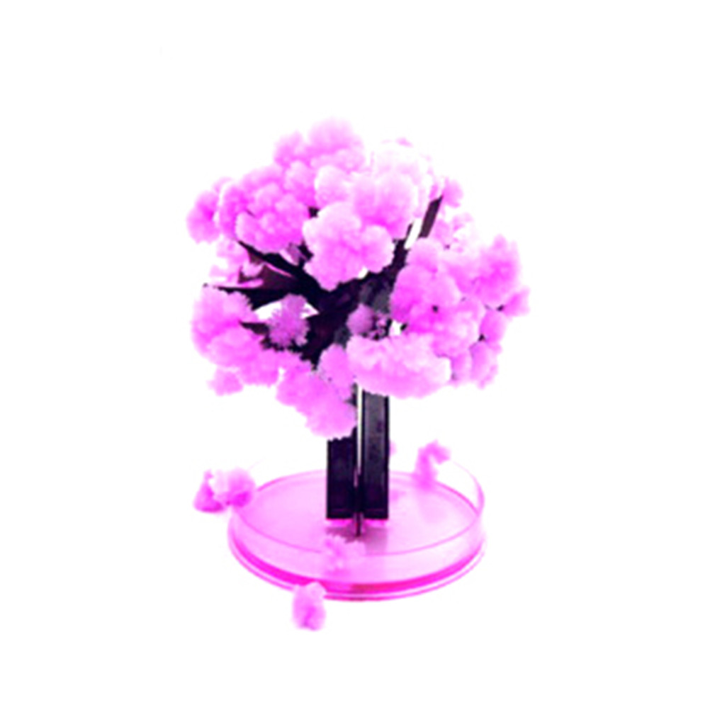 12x8cm Pink Desktop Cherry Blossom Cool Japan!ThumbsUp!Magic Japanese Sakura Tree-Brand New Made In Japan Grow Paper Trees