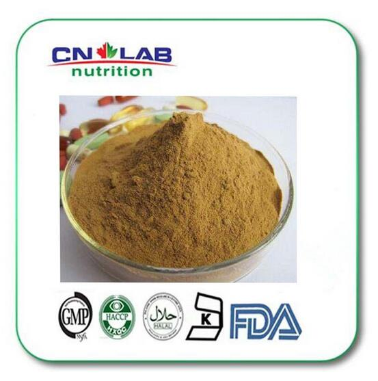 1000G Pure 40% Kudzu Extract Pueraria Root Flavone/Kudzuvine Root/PUERARIAE ROOT EXTRACT POWDER chinese new harvest hawthorn extract hawthorn berry extract flavone 600g