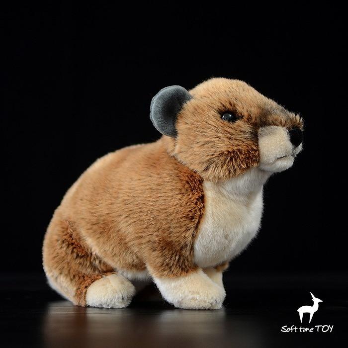 Rare Plush Toys For Children Gift Wildlife Africa Hyraxes Doll Simulation Animal Stuffed Toy Rare