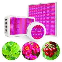 Led crescer espectro completo de luz 120 w 216 400 600 780 1200 crescer caixa para cultivvo plantas de interior tenda vegs crescer floração