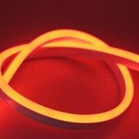 free shipping Flexible RGB 220V 2835 Waterproof Ropeb Indoor Outdoor Power Plug LED Neon Strip
