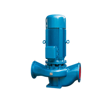High Temperature water pump  single-stage single-suction vertical centrifugal IRG25-125