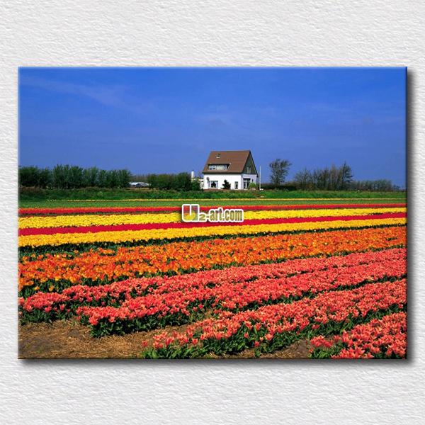 country side flores jardines pintura al leo impresa en la lona pictures para el dormitorio decoracin