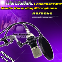 Professional Wired Sound Condenser Microphone BM700 For Computer Musical Instrument Karaoke Studio Recording Mic Shock Mount
