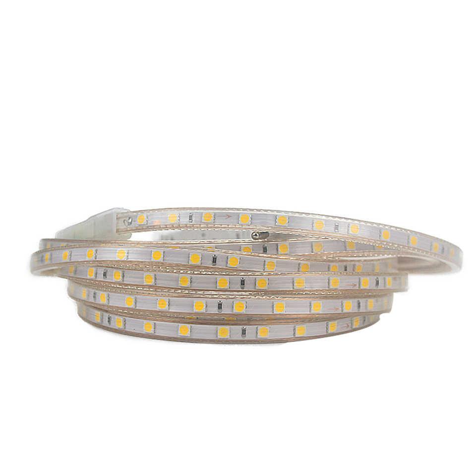 Tira de luz LED AC220V tubo de silicona impermeable cinta led 1/2/3/4/5/6 /7/8/9/10/12/15/20 m tira de led a prueba de agua 60 led /m + Enchufe europeo