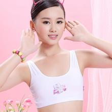2015 hot Fashion Young Developmental Girls Cotton Training Bra High Quality Wire Free Padded Children Summer Soprts Bra