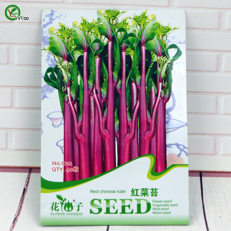 Red Chinese kale Seeds Annual Fruit and Vegetable .D