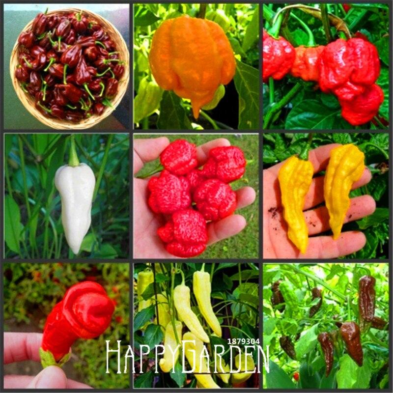 New Arrival!100pcs/Pack 16 Kinds To Choose Hot Chilli Pepper Capsicum Vegetable Bonsai,Happy Farm,#ADC316