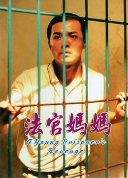 《法官妈妈》2001年中国大陆剧情,犯罪电影在线观看