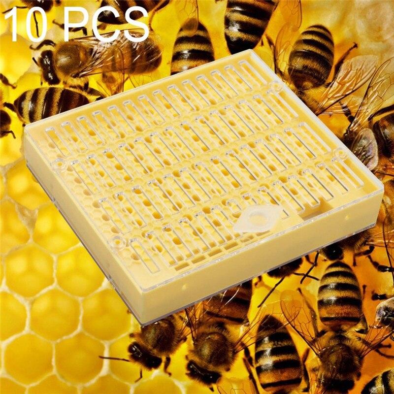10 個プラスチック蜂クイーンボックス女王飼育ボックスは女王蜂ツール養蜂ツールプラスチック耐久性のある害ません女王蜂  グループ上の ホーム&ガーデン からの 養蜂道具 の中 1