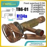 TB6-01 קבוע superheat TEV מיועד לתעשייה מערכות קירור  לא צריך באגים כדי לחסוך ייצור & לassemblying עלויות