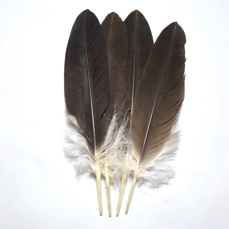 wholesale 10 pcs lot 16 18inch 40 45cm high quality natural Eagle bird Feathers crafts DIY Jewelry decoration feather headdress in Feather from Home Garden