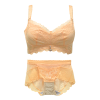 6fb586c5a NoEnName Lace Sexy Lingerie Bra Set Panties For Women Brief Bralette Plus  Size Floral Wire Free