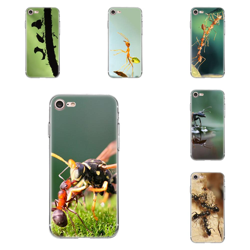 Tpwxnx Animal ant of nature For Xiaomi Redmi 5 4A 3 3S Pro Mi4 Mi4i Mi5 Mi5S Mi Max Mix 2 Note 3 4 Plus On Sale Luxury