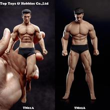Full set mini figure with pants PH2019-TM01A /TM02A TBLeague 1/12th Scale Super Flexible Male Seamless Body head toy collection tbleague ph 1 12 super flexible male seamless body for 1 12th scale action figure with stainless steel skeleton