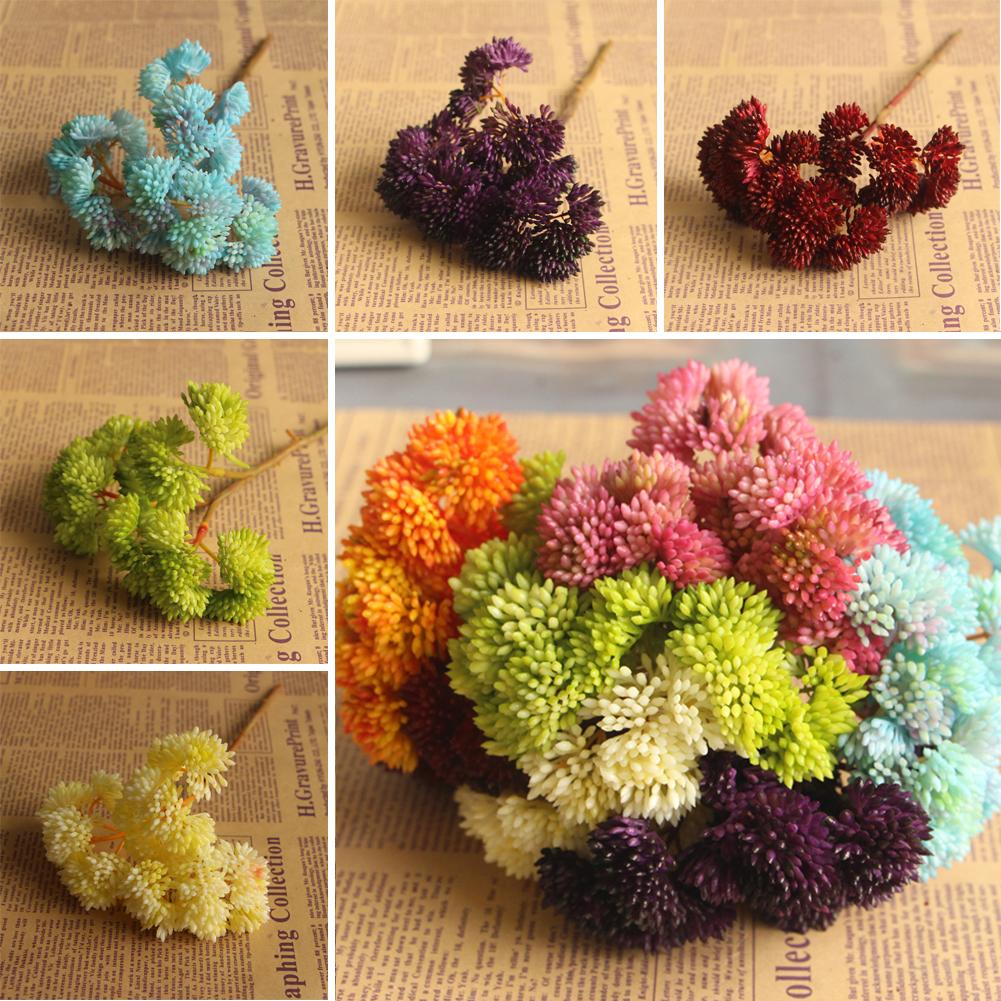 fruta suculenta hierba plantas raras de plantas del desierto paisaje falso arreglo de flores decoracin