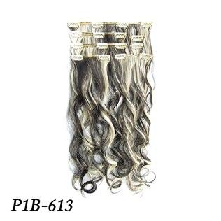 MS-888 P1B-613