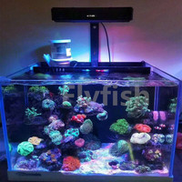 110 240V sunrise and sunset coral reef lamp A052 52W high power LED Sea Coral Light Coral Growth Color marine led lamp