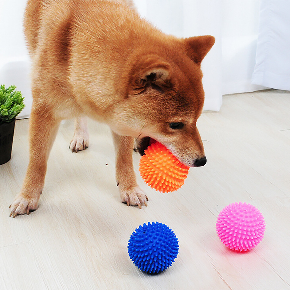 Pet Cat Dog Toy Ball Teething Vinyl Chew Biting Training Toys Puppy Kitten Playing Balls Outdoor Fetch Funny Toys Dropship Ju1