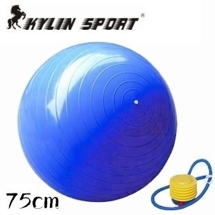 2015 New Hot Selling High Quality Home Balance Train Yoga Pilates Fitness GYM Exercise Ball for wholesale