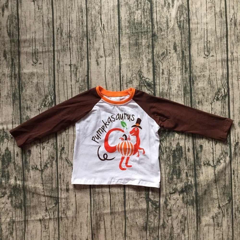 День благодарения; детская одежда для маленьких мальчиков; изысканные наряды; топ; футболки; raglans; динозавр; коричневый; Турция; принт; Хлопок; с круглым вырезом; Новинка