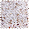 Mother Of Pearl Colorful Bathroom Wall Panels Fan Shaped Fish Scale Mosaic Tile Honed 6 Sq