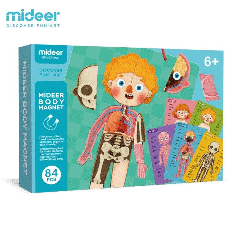 Micerf 3D modèle de corps humain magnétique jouets éducatifs pour enfants humain cognitif Puzzle magnétique