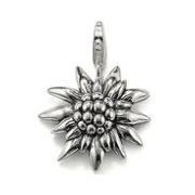 Drop Shipping European Style Classic Magic Edelweiss Pendants Charm (2.5x2.5cm)fit Bracelet For Women TS-CH0342