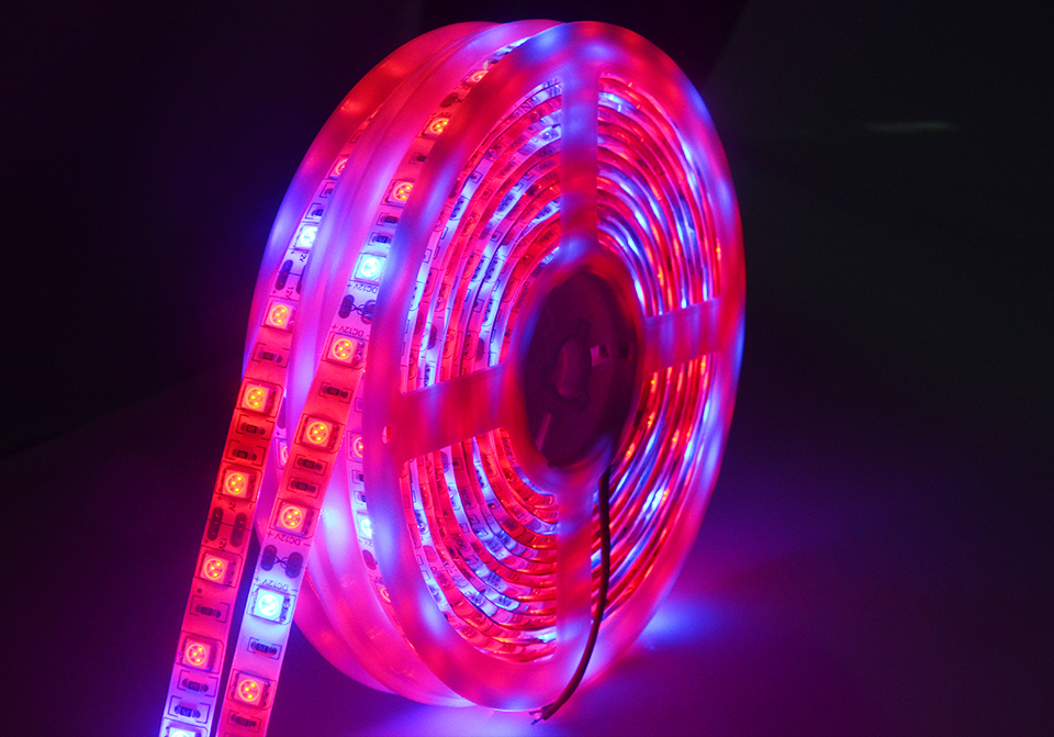 5M Led Plant grow light Waterproof SMD5050 Hydroponic Systems Led Grow Strip Light 300Leds Full spectrum (16)