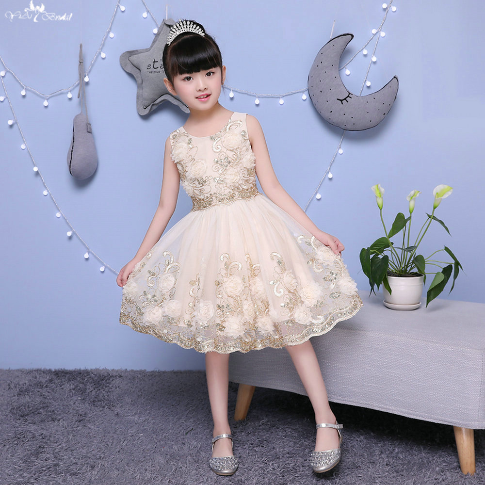 TF011 Champagne 3d Lace   Flowers   Applique With Sequin Shining   Flower     Girl     Dresses