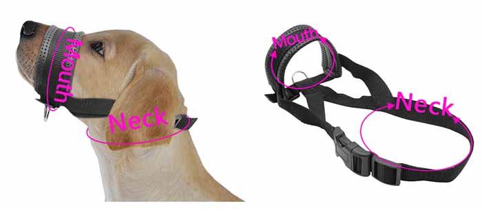 Soft-Padded-Pet-Head-Collar-Champion-Dog-Training-Halter-Nylon-Dog-Muzzle-Loop-Stops-Dog-Pulling