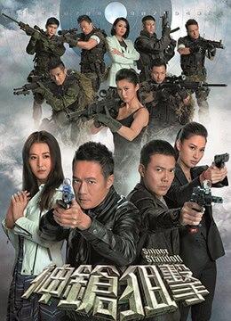 《神枪狙击》2013年香港剧情,爱情,犯罪电视剧在线观看