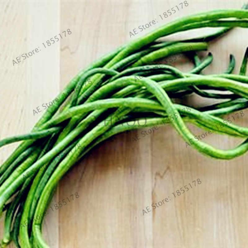 20 adet/torba Uzun Fasulye Vigna Unguiculata bonsai, Börülce Yılan Fasulye sebze bitkileri, Mini Bahçe uzun Fasulye flores