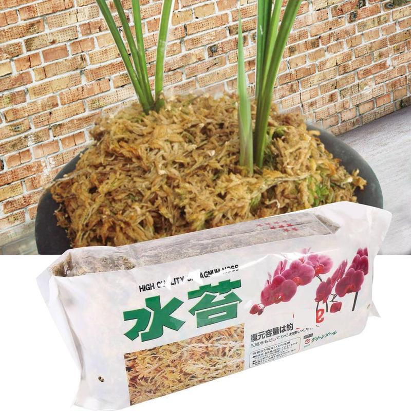 Garden-Supplies Orchid Organic Fertilizer Sphagnum Moss Nutrition Phalaenopsis For 6L