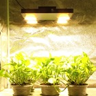 Vero29 Gen7 COB LED Plant Grow Lights Full Spectrum Ultra-thin Led Growing Panel for Hydroponic Indoor Plants Growth Lighting