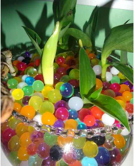 100 pcs/set Magic Jelly Ball Mix Crystal Soil Gel Beads Mud Grow Polymer Hydrogel Water Pearl Orbiz Aqua Soil Plant Cultivate