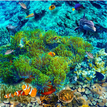 beibehang Underwater world tropical fish 3D floor tiles custom large - scale murals pvc waterproof thick paste