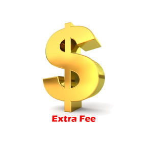 RAYKUBE Extra Fee Payment