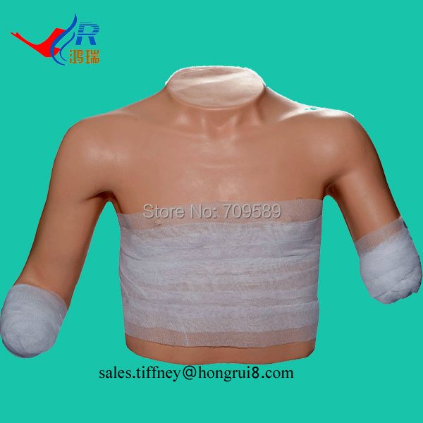 Clinical Bandaging Model in Superior Position, Wound Dressing Model, Nursing ModelClinical Bandaging Model in Superior Position, Wound Dressing Model, Nursing Model