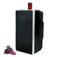 Vin Réfrigérateur De Luxe Mini Vin Cooler frais et chauffage de voiture refroidisseur 750 ml voiture 12 V ménage 220 V