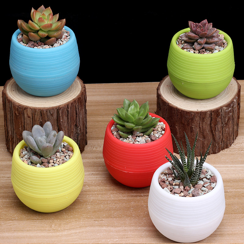 Jqworv Colourful Round Plastic Plant Flower Pots Home Office Decor Planter Decorative Crafts In The Bedroom Plant Pot Maceta