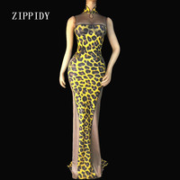 Sexy Leopard Pattern Mesh Dress Sleeveless Cheongsam Long Dress Women's Birthday Party Nightclub Outfit Female Singer Stage Wear