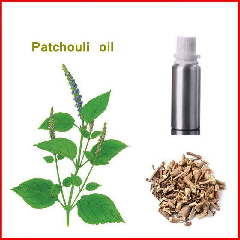 100% Natural&Pure Patchouli/ Pogostemon cablin Oil with Free Shipping, relieving neurasthenia gmp certified inflammation relieving natural 98