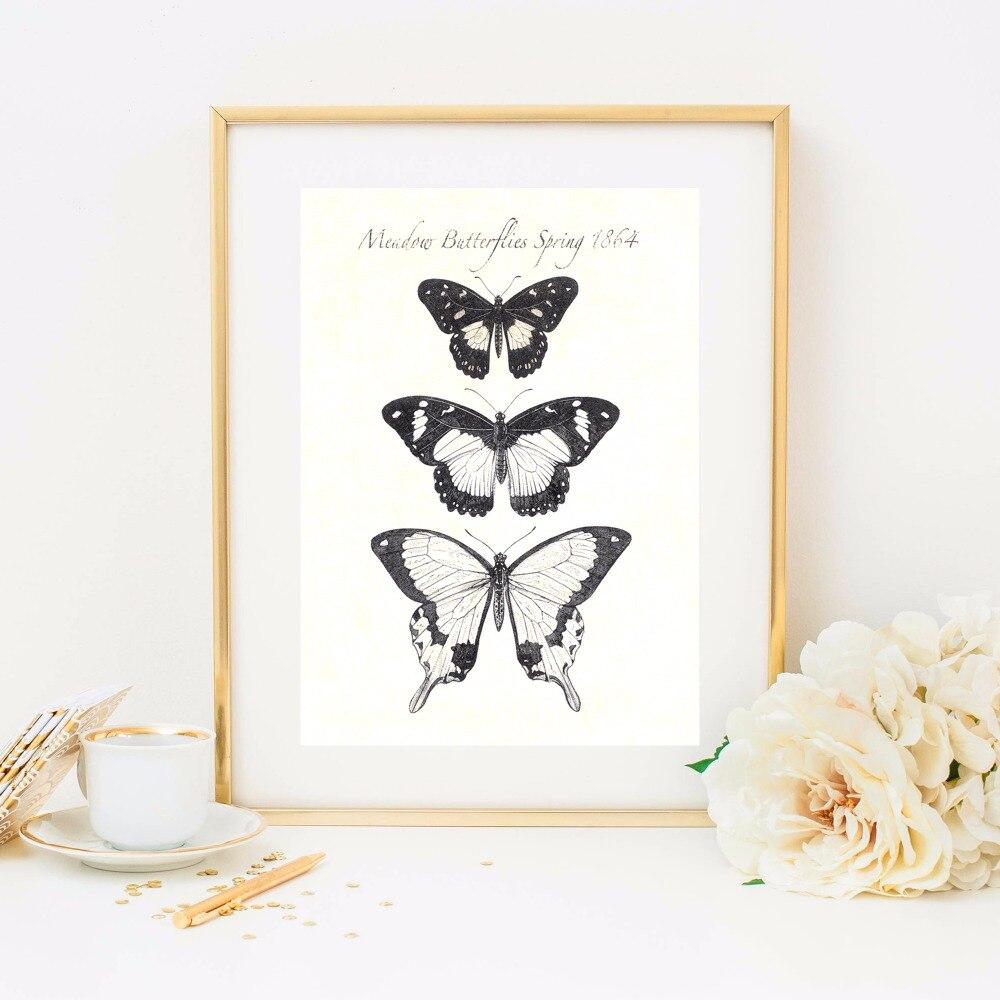 A pillangók növekedése Vászon művészeti nyomtatás Festmény - Lakberendezés - Fénykép 4