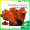 GMP manufacturer Polysaccharides Antrodia cinnamomea extract powder 300g/lot