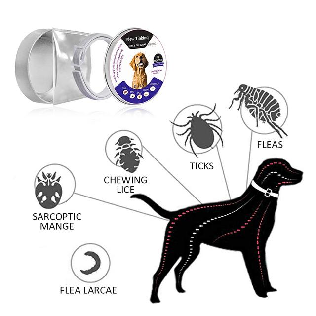 Dewel Dog Collar Anti Flea Mosquitoes Repellent Ticks Insect Waterproof Herbal Pet Collar 8 Months Protection Dog Accessories