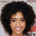 Афро-американской короткие вьющиеся парики синтетические парики для чернокожих женщин kinky вьющиеся волосы парики естественный черный цвет дешевые Плутон Прета