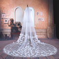 White/Ivory Tulle 3M Long One Layer Appliques Wedding Veil with Flowers Elegant Fashion Wedding accessories Bridal Veils TBV02
