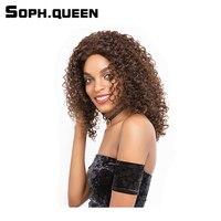 Soph królowa Włosy Brazylijski Kręcone Wave Włosów Ludzkich Peruk Dla Czarnych kobiety 16 Cal 155g #2/4 Kolor Remy Ludzki Włos Koronki Peruki